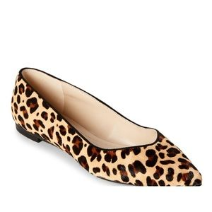 NWT MARC FISHER ALANY NATURAL LEOPARD FLATS!